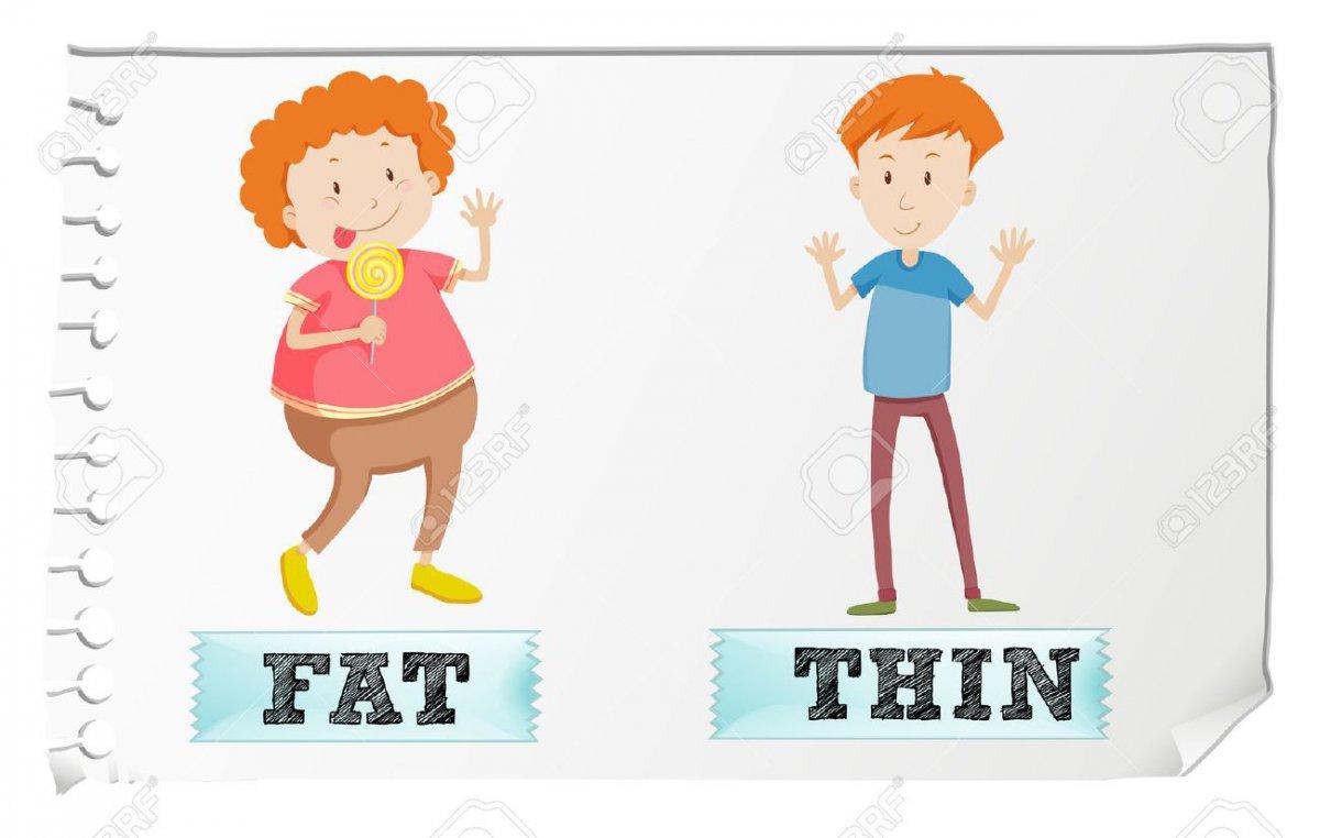 چاقی و مشکلات آن